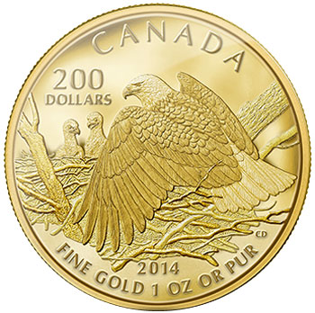 Bald Eagle Protecting Nest Gold Coin