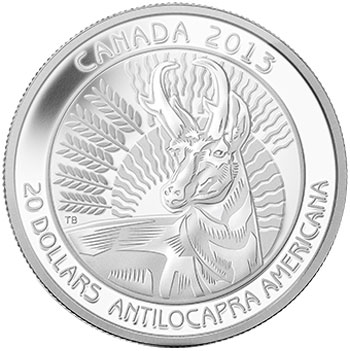 Untamed Canada Pronghorn Silver Coin