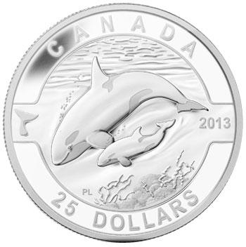 2013 Orca 1 oz silver coin