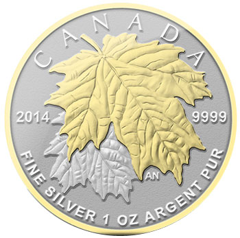 2013 Fractional Silver Maple Leaf Set