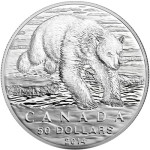 2014 Polar Bear $50 Silver Coin