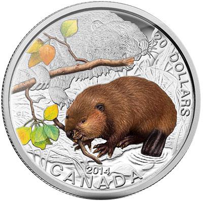 2014 Baby Beaver Silver Coin
