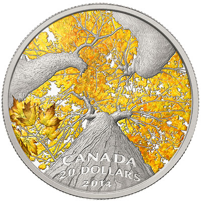 2014 Autumn Allure Maple Canopy Silver Coin