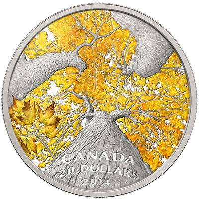 2014 Autumn Allure Maple Canopy Silver Coin