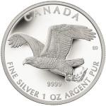 Bald Eagle Silver Coin