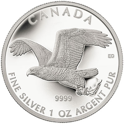 Bald Eagle Silver Coin