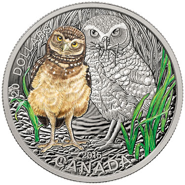 Baby Burrowing Owl Silver coin