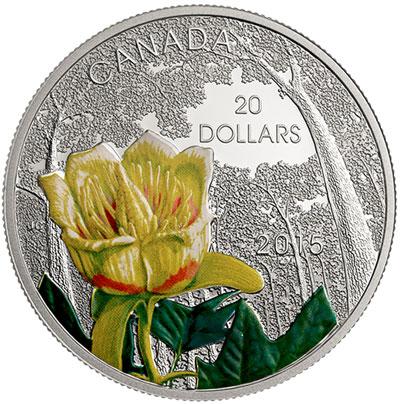 Carolinian Tulip-Tree Silver Coin